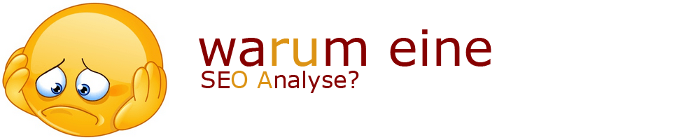 Warum eine SEO Analyse?