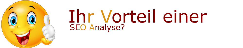 Vorteile einer SEO Analyse?